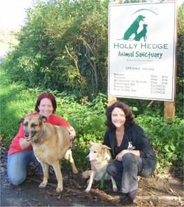 Hollyhedge Animal Sanctuary